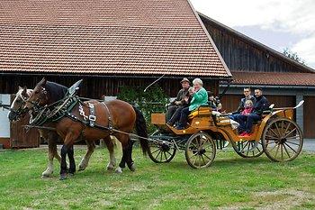 Bayerwald Ferienhof in Eppenschlag