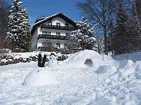 Ein Wintermärchen im bayerischen Wald