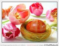 Ostern, der Frühling kommt in den Bayerischen Wald