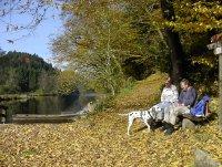 * Ilztal - Herbst *